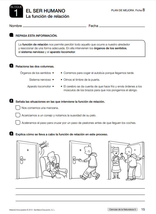 Ejercicios con soluciones Ciencias Naturales 5 Primaria Santillana PDF