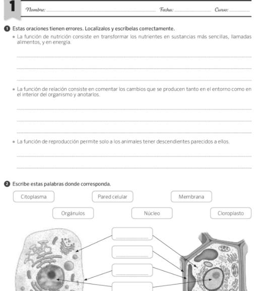 Evaluaciones Ciencias Naturales 6 Primaria SM SAVIA