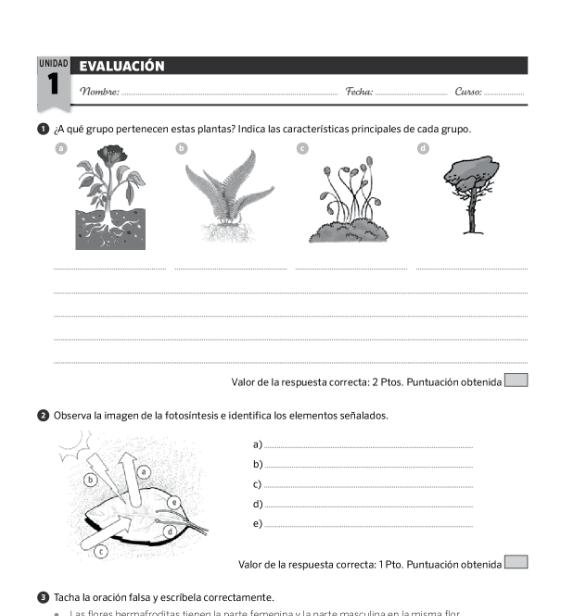 Examenes Ciencias Naturales 5 Primaria SM SAVIA