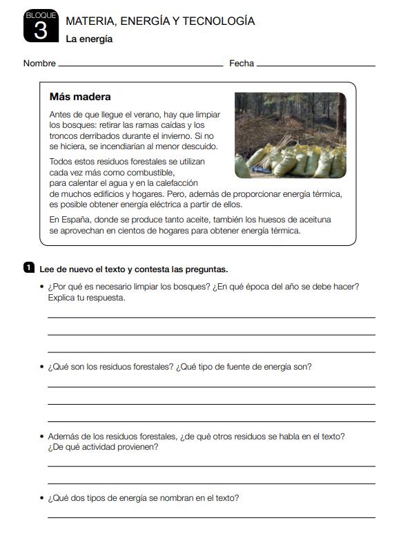 Fichas de Refuerzo y Ampliacion Ciencias Naturales 3 Primaria Santillana PDF