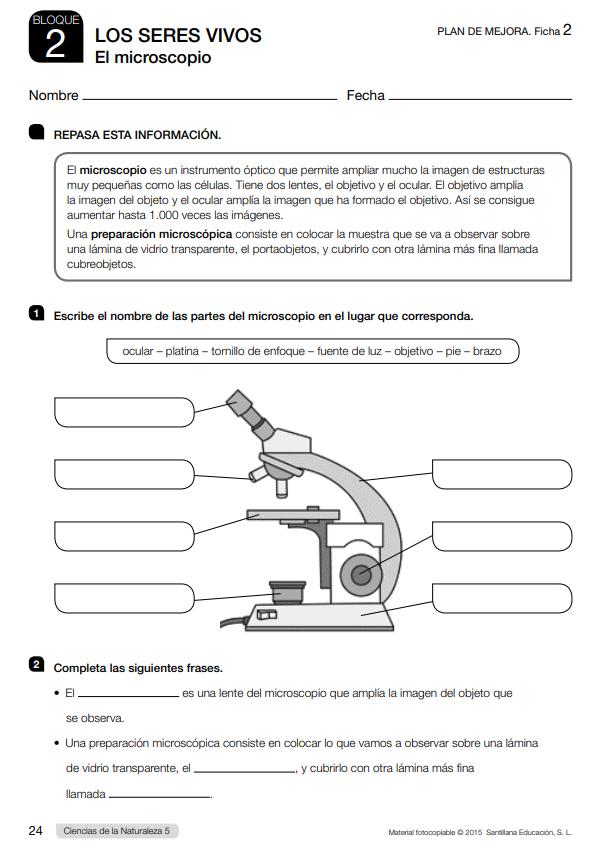 Fichas de Refuerzo y Ampliacion Ciencias Naturales 5 Primaria Santillana PDF