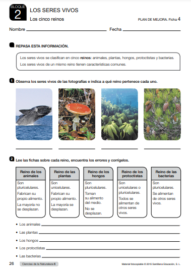 Refuerzo y Ampliacion Ciencias Naturales 6 Primaria Santillana PDF